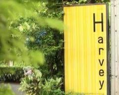 ดูรายการย้อนหลัง อาหารนานาชาติ ร้าน Harvey