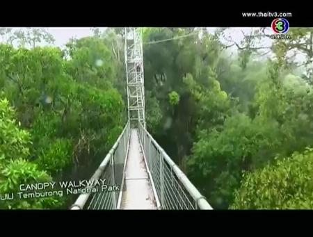 ดูละครย้อนหลัง To Ulu Temburong National Park, Brunai