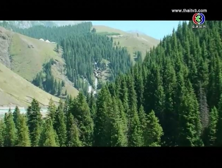 ดูละครย้อนหลัง ปลูกป่า เพื่อพัฒนาคุณภาพชีวิต