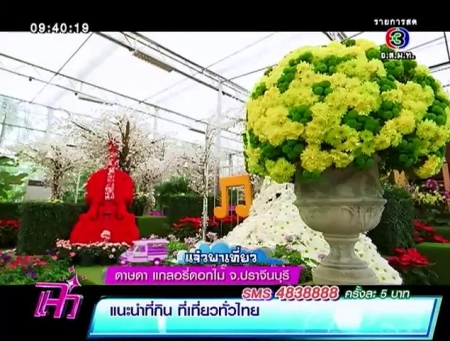 ดูละครย้อนหลัง แจ๋วพาเที่ยว - ดาษดา แกลอรี่ดอกไม้ จ.ปราจีนบุรี