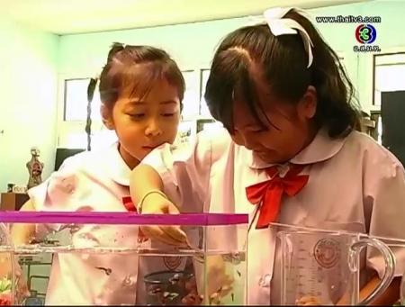 ดูรายการย้อนหลัง นับปลาในตู้  (1)