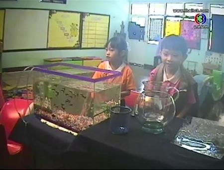 ดูรายการย้อนหลัง นับปลาในตู้   (2)