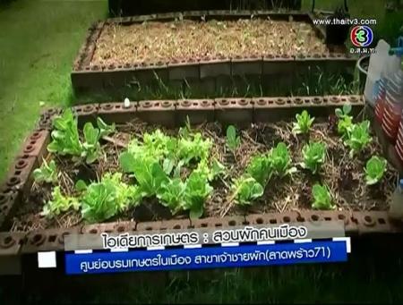 ดูรายการย้อนหลัง ไอเดียการเกษตร : สวนผักคนเมือง