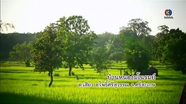 ดูรายการย้อนหลัง หอดอกผึ้ง บ้านหนองมโนรมย์ จ.ศรีสะเกษ 2/3