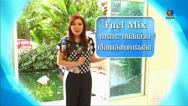 ดูละครย้อนหลัง ศัพท์สอนรวย - Fuel Mix = การกระจายสัดส่วน เชื้อเพลิงในการผลิต