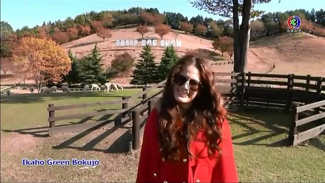 ดูรายการย้อนหลัง เซย์ไฮ (Say Hi)  | Ikaho, Gunma, Ikaho Green Bokujo