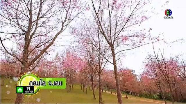 ดูรายการย้อนหลัง เปรี้ยวปาก เช็คอิน | ภูลมโล จ.เลย | 15-02-58 | TV3 Official