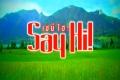 เซย์ไฮ (Say Hi)