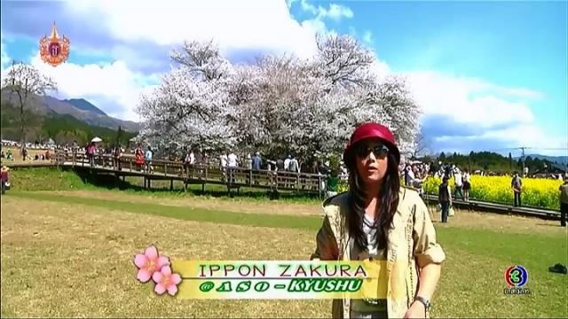 ดูละครย้อนหลัง เซย์ไฮ (Say Hi) | Ippon Zakura : @Aso - Kyushu
