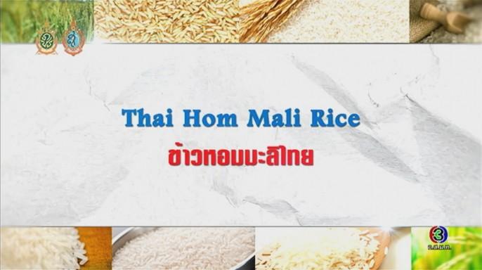 ดูละครย้อนหลัง ศัพท์สอนรวย | Thai Hom Mali Rice = ข้าวหอมมะลิไทย