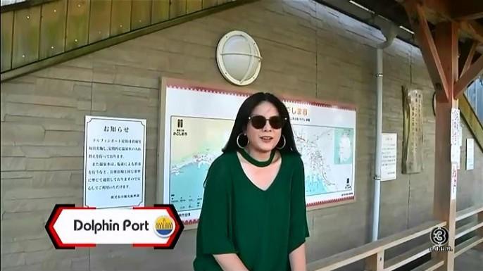 ดูรายการย้อนหลัง เซย์ไฮ (Say Hi) | Dolphin Port - Japan