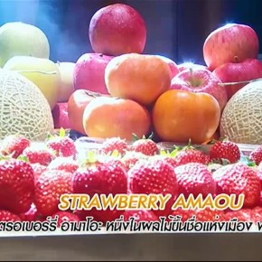 รายการย้อนหลัง ศึกเมนูพิชิตใจ A Matter of Taste | 03-04-60 | TV3 Official