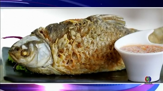 ดูละครย้อนหลัง ครัวคุณต๋อย | ปลาตะเพียนเสวย ร้านอาหารลานลูกไม้แดง