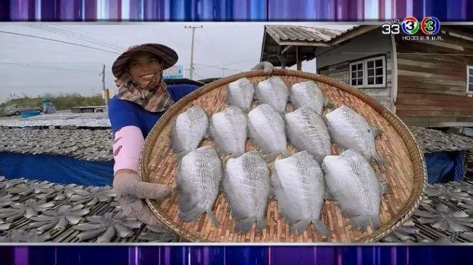 ดูละครย้อนหลัง ครัวคุณต๋อย | ปลาสลิด บางบ่อ ร้านปลาสลิดสมพร