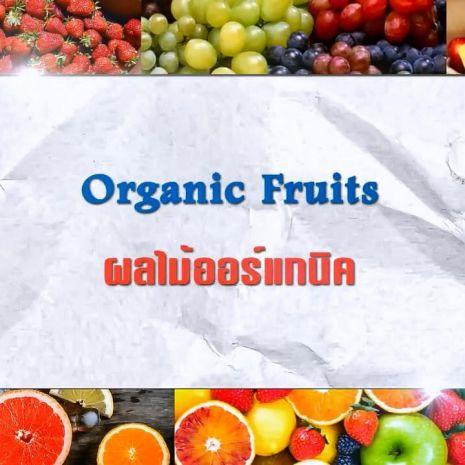 รายการย้อนหลัง ศัพท์สอนรวย | Organic Fruits = ผลไม้ออร์แกนิค