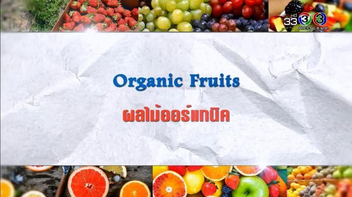 ดูรายการย้อนหลัง ศัพท์สอนรวย | Organic Fruits = ผลไม้ออร์แกนิค