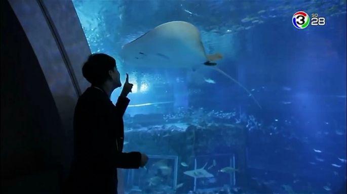 ดูรายการย้อนหลัง สมุดโคจร On The Way | S.E.A. Aquarium ประเทศสิงคโปร์ | 12-05-61