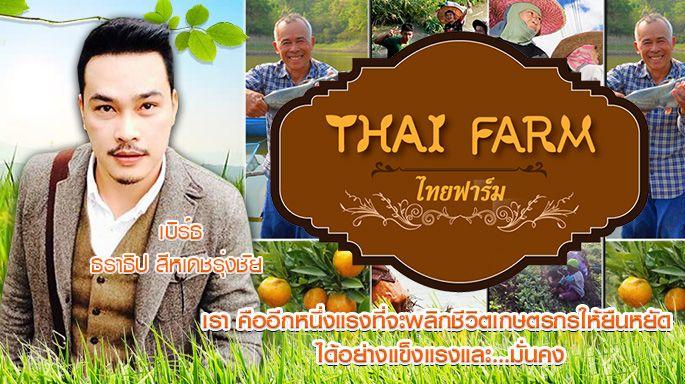 ดูละครย้อนหลัง ไทยฟาร์ม : ชาวสวนยางชลบุรี รวมกลุ่มผลิตยางแท่ง STR20 ส่งออก (2/3) [19/05/61]