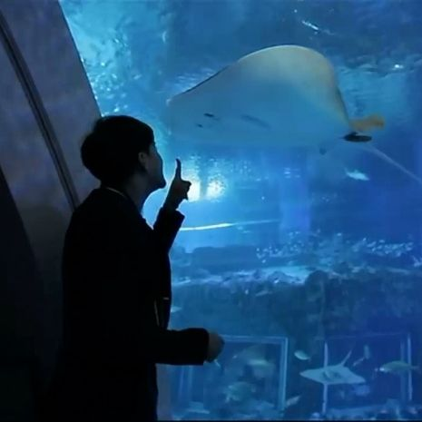 รายการย้อนหลัง สมุดโคจร On The Way   S.E.A. Aquarium ประเทศสิงคโปร์   12-05-61