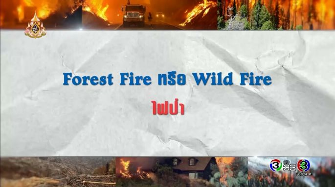ดูละครย้อนหลัง ศัพท์สอนรวย | Forest Fire หรือ Wild Fire = ไฟป่า