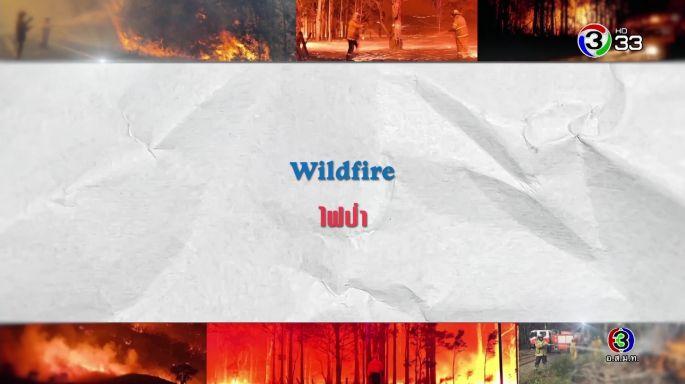 ดูรายการย้อนหลัง ศัพท์สอนรวย | Wildfire = ไฟป่า