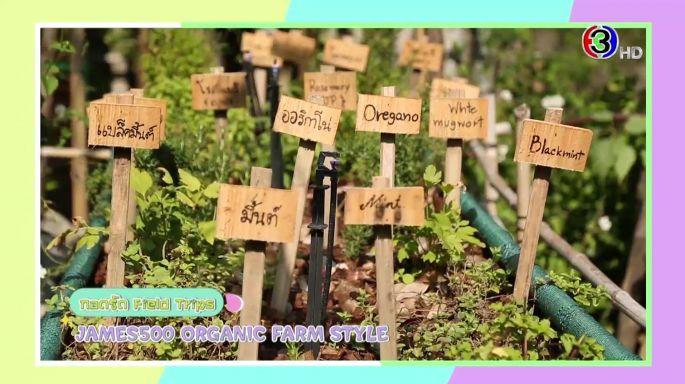 ดูรายการย้อนหลัง กอดรัด Field Trips | JAMES500 ORGANIC FARM STYLE