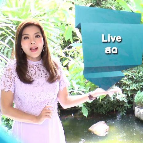 รายการช่อง3 ศัพท์สอนรวย | Live = สด